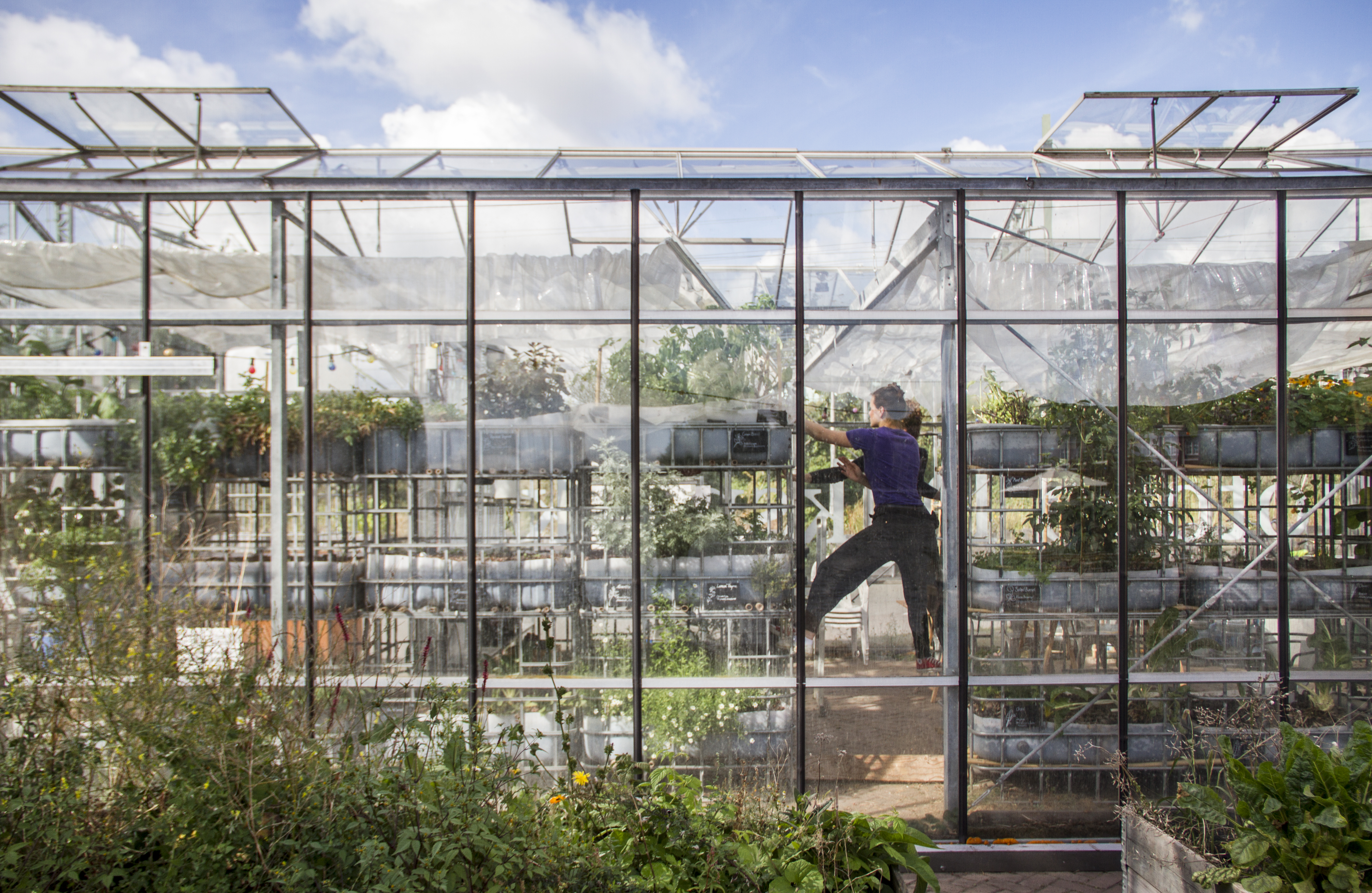 ökoRAUSCH Blog – Urban Agriculture